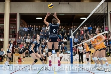 Volleyball NLA 2018-2019 TS Volley Duedingen vs Viteos NUC am 17.10.18 im Sportzentrum Leimacker in Duedingen (Schweiz).